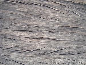 Empty_wood_texture