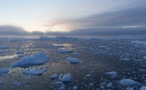 Endless field of ice floes at sunset