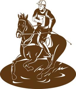 Equestrian Riding Horse