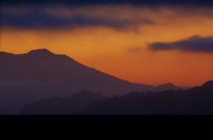 Evening Landscape Background