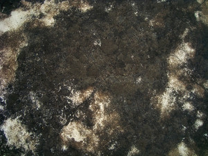 Extreme_grunge_texture