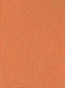 Fabric 20 Texture