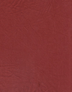 Fabric 21 Texture