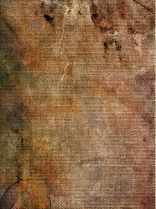 Fabric Grunge 3 Texture