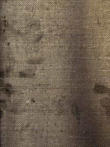 Fabric Grunge 4 Texture