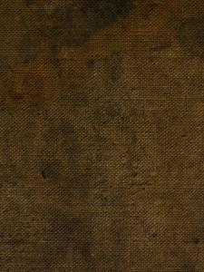 Fabric Grunge 6 Texture