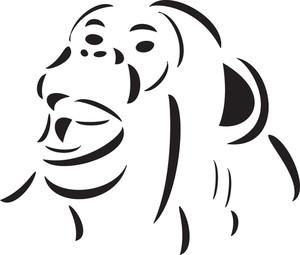 Face Of An Ape.