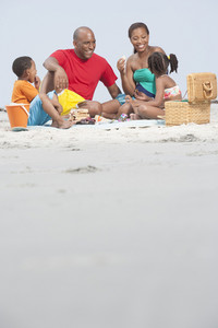Family having a picnic at the beach