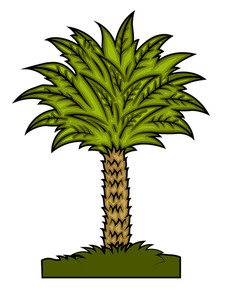 Fancy Palm Tree Vector