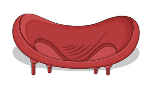 Fancy Sofa
