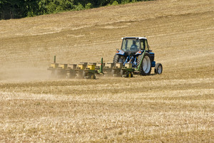 Farmer Seeding Field