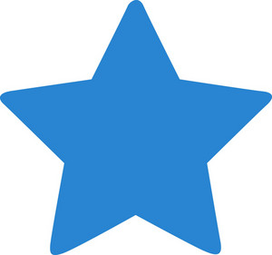 Favorite Star Simplicity Icon