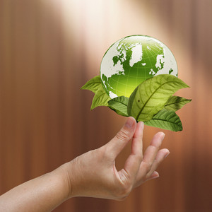 Female Hand Holding Green Earth With A Growing Plant