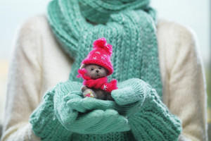 Female hands holding a cute teddy bear. Woman hands in teal mittens showing a teddy bear gift dresses in pink knitted hat and scarf. Cute Christmas present. Winter holidays concept.