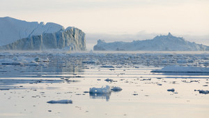 Field of ice floes and icebergs on a foggy day