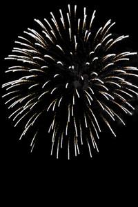 Fireworks exploding over a dark night sky.