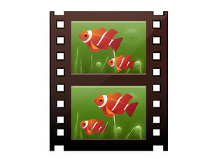 Fish On Film Strip