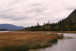 Fishing River In Alaska
