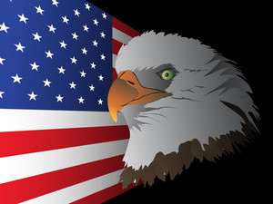 Flag Background With Eagle