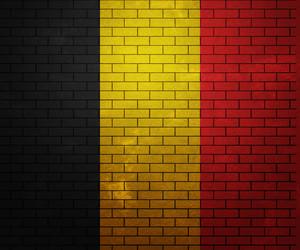 Flag Of Belgium On Brick Wall