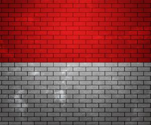 Flag Of Monaco On Brick Wall