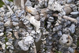 Flintstones With A Hole - Huehnergoetter