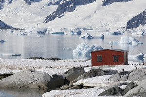 Flock of penguins and a red building on an icy shore