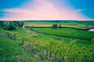 Floodplain meadow in spring