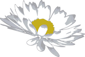 Floral 1 Vector