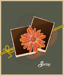Floral Background Vector Illustration With Photo Frame And Spring Flowers