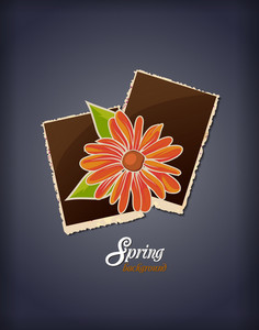 Floral Background Vector Illustration With Photo Frame