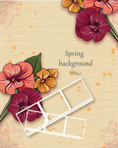 Floral Background Vector Illustration With Spring Flowers And Photo Frame