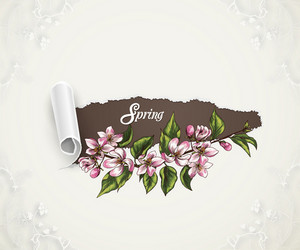 Floral Background Vector Illustration With Spring Flowers And Torn Paper