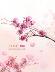 Floral Vector Background Illustration With Branches