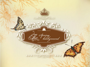 Floral Vector Background Illustration With Frame And Butterflies