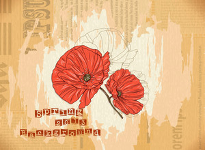 Floral Vector Background Illustration With Poppy