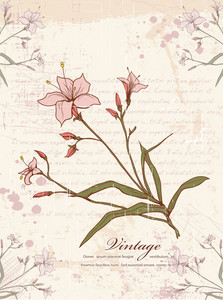 Floral With Grunge Vector Illustration