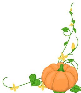 Flourish Pumpkin Corner Frame
