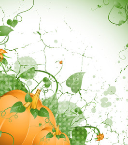 Flourish Pumpkin Grunge Background