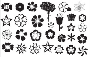 Flowers Designs Vectors