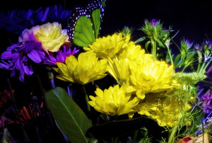 Flowers In Black Background