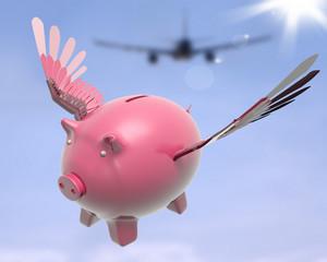 Flying Piggy Shows Sky High Future Success