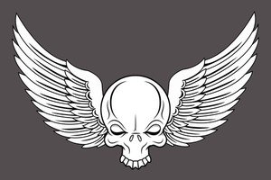 Flying Skull - Vector Cartoon Illustration