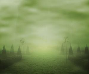 Fog Fantasy Backdrop