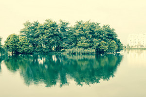 Foggy morning in park with lake and green trees in Batumi city