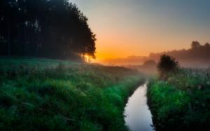 Foggy morning on meadow. Beautiful sunrise on polish countryside.