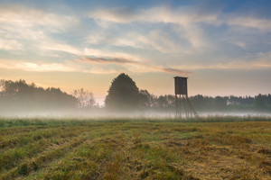 Foggy morning on meadow with raised hide