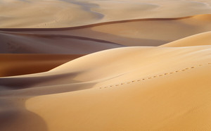 Footprints over a sand dune in the desert