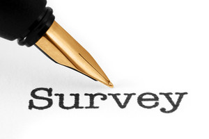 Fountain Pen On Survey
