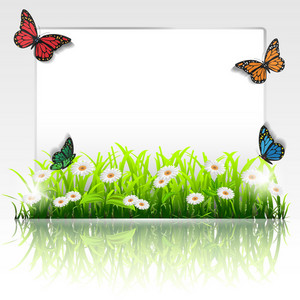 Frame With Grass,chamomiles And Butterflies